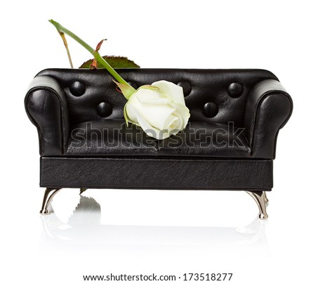 Sofa, couch with white rose  - stock photo
