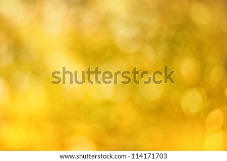 Soft blurry bokeh space background of golden yellows.Autumn colors - stock photo