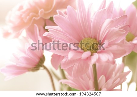 Soft tone floral bouquet - stock photo