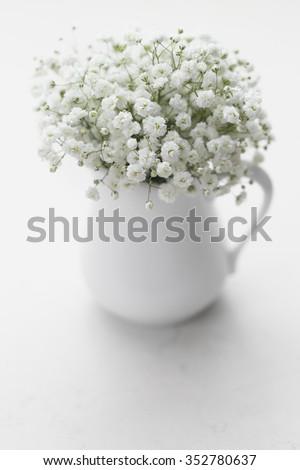 Soft white baby's breath flowers (Gypsophila) in white vase - stock photo