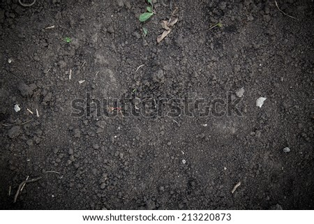 soil black texture closeup background - stock photo