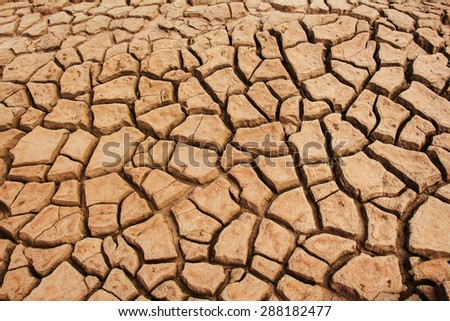Soil cracked background - stock photo