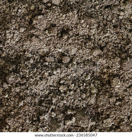 Soil dirt background texture, natural pattern - stock photo