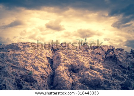 soil, grass and nature background - stock photo