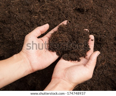 Soil- handful,female hands, humus soil - stock photo