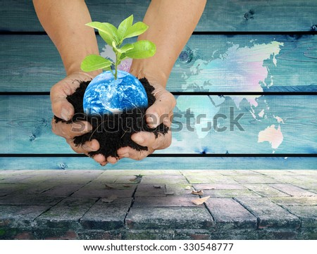 soil in palm hands with little tiny green tree planting over vintage wood background and old misty bricks floor on business money saving concept - stock photo