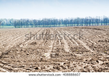Soil is a natural clay minerals are naturally many species suitable for planting, the soil is fertile plants grow well. - stock photo