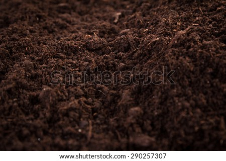 Soil or dirt section isolated on white background - stock photo