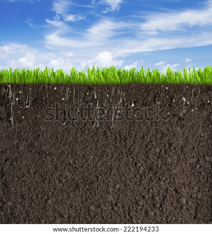 Soil or dirt section with grass under sky - stock photo