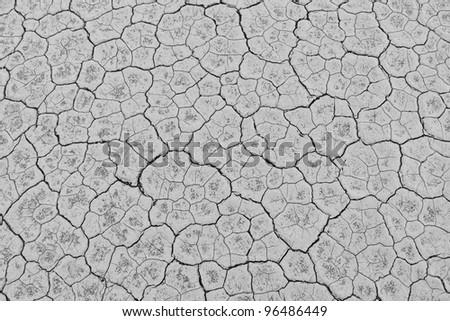 Soil Salt Pan Texture - stock photo