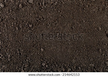 Soil texture background for your design. Closeup - stock photo