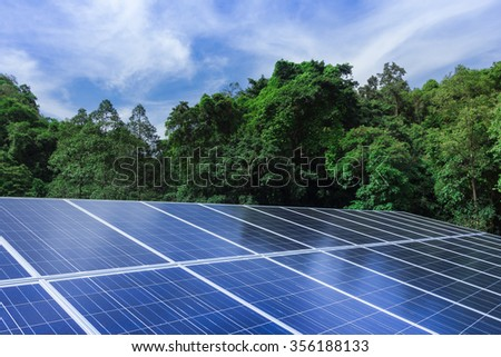 Solar cell panels with trees and blue sky nature outdoor - stock photo