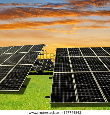 Solar energy panels in the setting sun - stock photo
