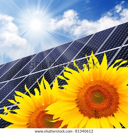Solar energy panels on a sunflower field against sunny sky. - stock photo