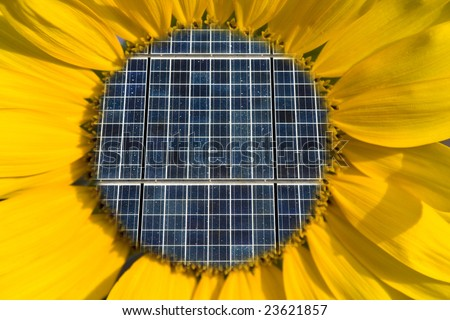 Solar Panels Inside of a Sunflower Concept - stock photo