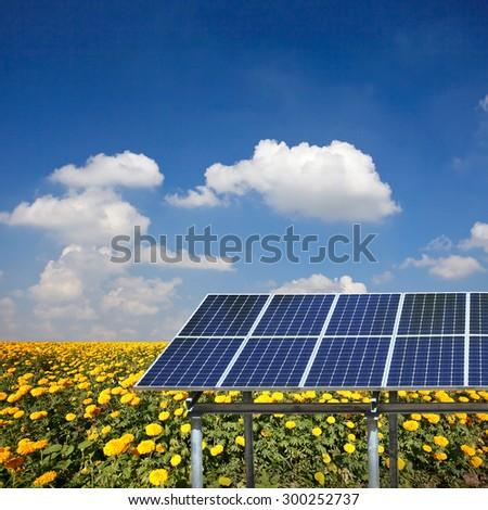 Solar panels on ground - stock photo