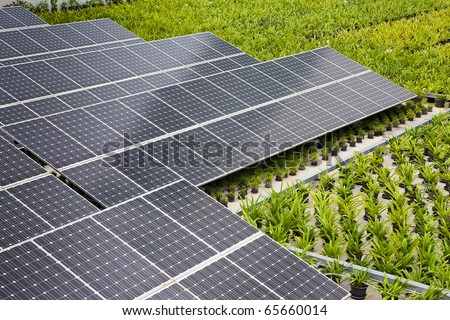 Solar panels on the building with a tree to heat - stock photo