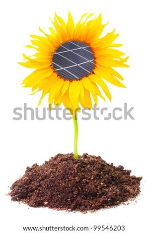 Solar panels on the sunflower. Environmental concept. Pure energy metaphor. - stock photo