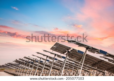solar power farm in  sunset , develops coastal tidal flats and green energy concept  - stock photo