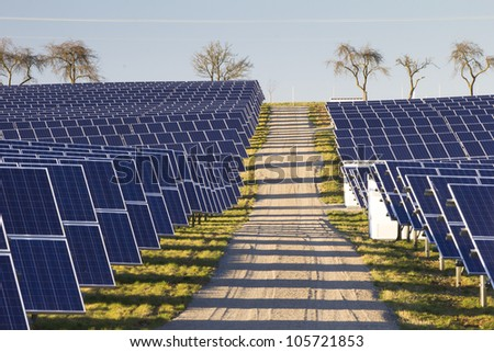 Solarpark with path and trees - stock photo