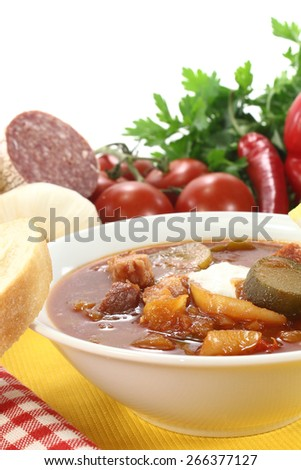 Soljanka in a soup bowl with salami on a light background - stock photo