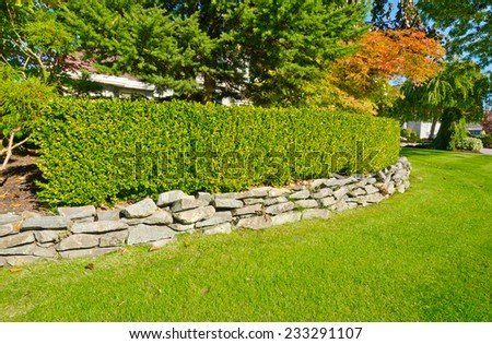 Some nicely trimmed bushes on the leveled front yard. Landscape design. - stock photo