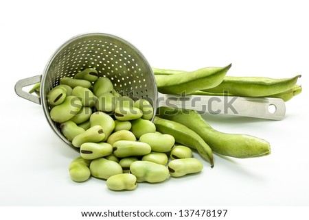 some raw broad beans on white background - stock photo