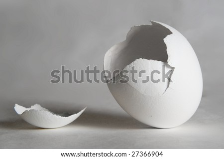 Something just have hatched - stock photo