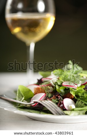 Sophisticated salad with wine - stock photo
