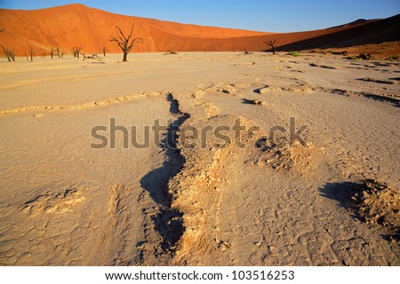 Sossusvlei landscape with dead Acacia trees and red sand dunes, Namibia, southern Africa - stock photo