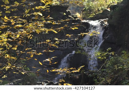 Source Vistula. Crystalline stream, clean water and waterfall - stock photo