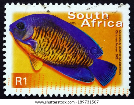 SOUTH AFRICA - CIRCA 2000: a stamp printed in South Africa shows Coral Beauty, Centropyge Bispinosus, Marine Tropical Fish, circa 2000 - stock photo