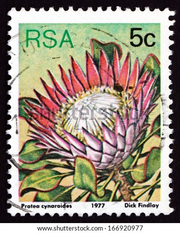 SOUTH AFRICA - CIRCA 1977: a stamp printed in South Africa shows King Protea, Protea Cynaroides, Flowering Plant, circa 1977 - stock photo