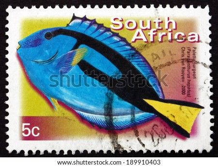 SOUTH AFRICA - CIRCA 2000: a stamp printed in South Africa shows Palette Surgeonfish, Paracanthurus Hepatus, Marine Tropical Fish, circa 2000 - stock photo