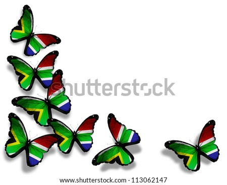 South Africa flag butterflies, isolated on white background - stock photo