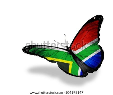 South Africa flag butterfly flying, isolated on white background - stock photo