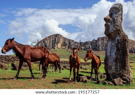 South America. Easter Island. Horses. Statues. - stock photo