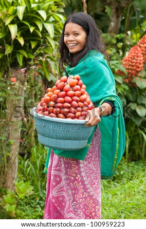 South-east asian woman carrying a basket of red fruit - stock photo