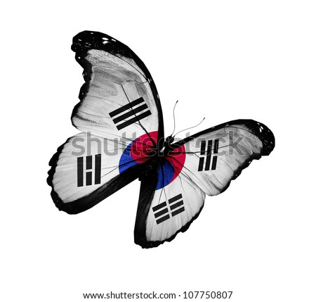 South Korea flag butterfly flying, isolated on white background - stock photo