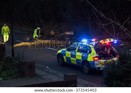 SOUTHAMPTON, ENGLAND - February 8 2015: Following Storm Imogen, Emergency services help to remove a fallen tree from the road,  on the edge of The Common, Southampton, UK. - stock photo