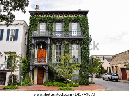 southern residence overgrown with ivy - stock photo