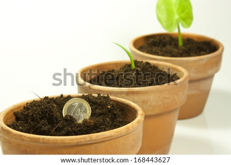 sow a one euro coin in a jar - stock photo