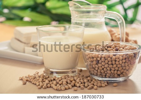 Soy bean, tofu and other soy products-Filtered Image - stock photo