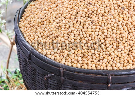 Soy beans in a black basket on blur nature background. - stock photo