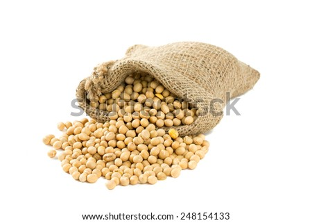 soya beans in a bag isolated on white - stock photo