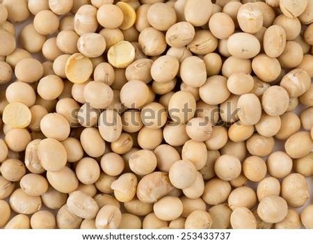 soya beans isolated on white - stock photo