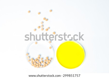 Soybean genetically modified, Plant Cell science - stock photo