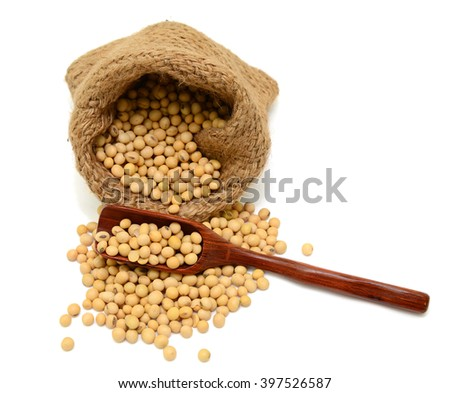 Soybeans in sacks isolated on white background - stock photo
