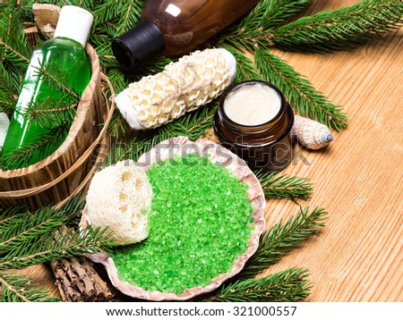 Spa and pampering products and accessories: sea salt in shell, loofah, wisp of bast, skin care cream, shampoo and shower gel with pumice in wooden basket surrounded by fir branches - stock photo