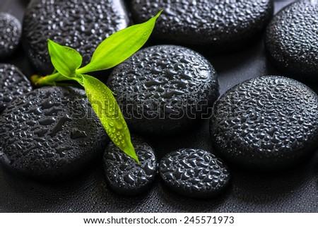 spa background of green branch bamboo on zen basalt stones with dew - stock photo